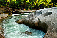 Northern Experience Eco Tour to Atherton Tablelands, Waterfalls and Paronella Park Day Tour