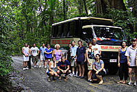 One Day Daintree Cape Tribulation 4WD Bloomfield Track